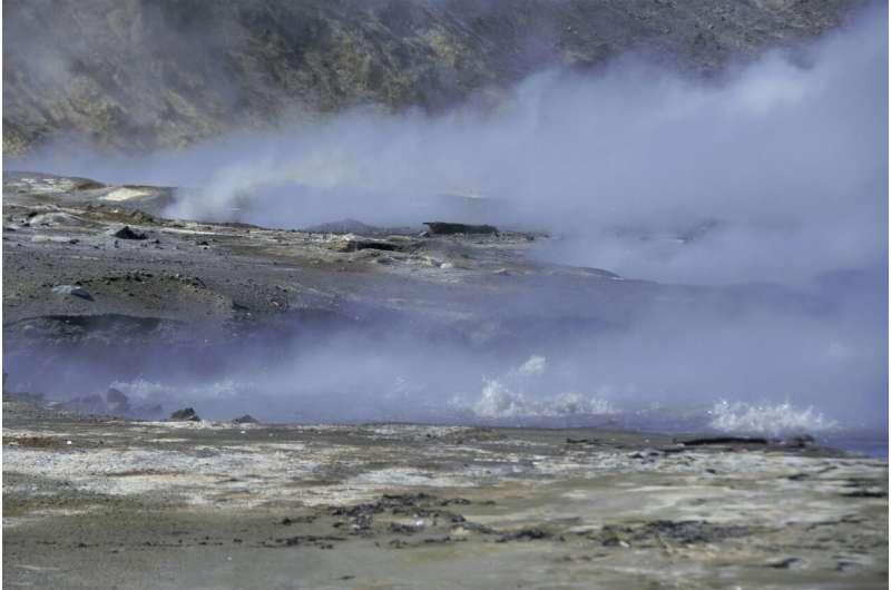 Northern fur seals multiply on steaming Alaska volcano