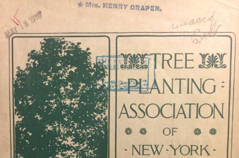 Not so long ago, cities were starved for trees