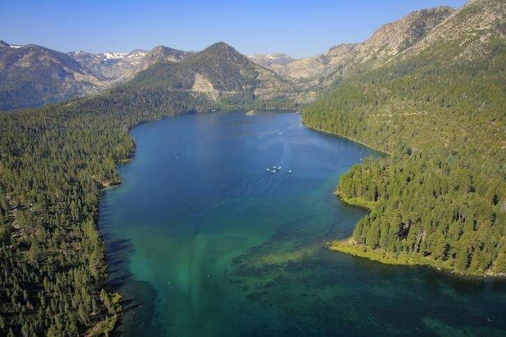 Removing tiny shrimp may help climate-proof Lake Tahoe's clarity