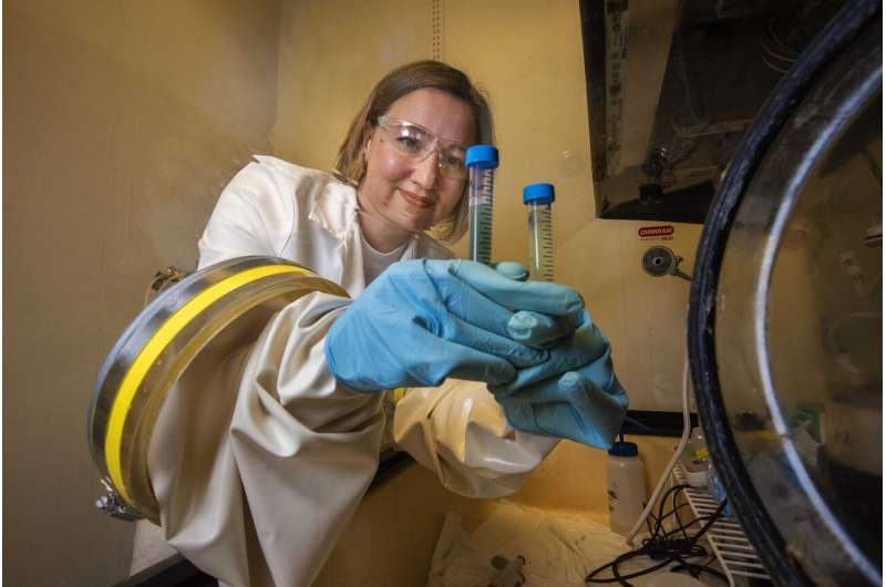 Research identifies chemical mechanism that shows how iron in soils can immobilize arsenic