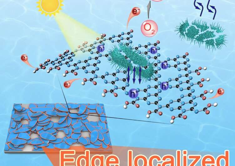 Scientists develop metal-free photocatalyst to purify pathogen-rich water in minutes