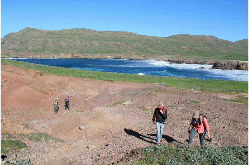 Scientists measure extent of recovery for critically endangered black abalone