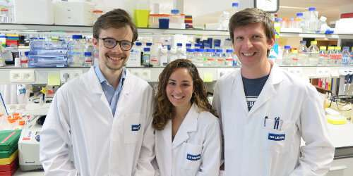Stem cell researchers in Belgium reactivate 'back-up genes' in the lab