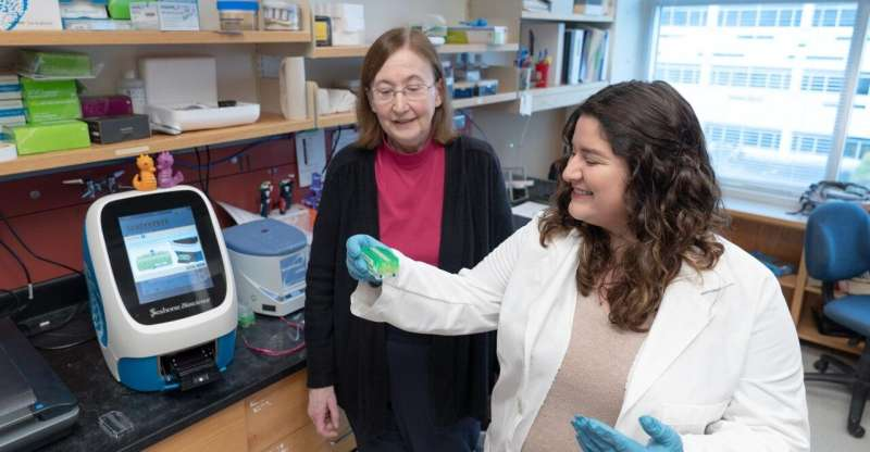 Study finds differences in energy use by immune cells in ME/CFS