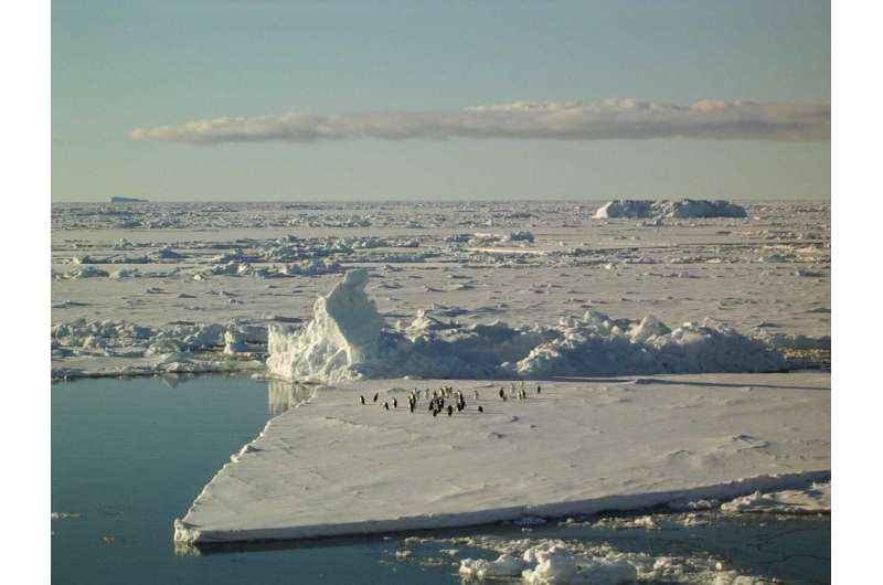 What happens if the Antarctic ice sheet becomes destabilized?