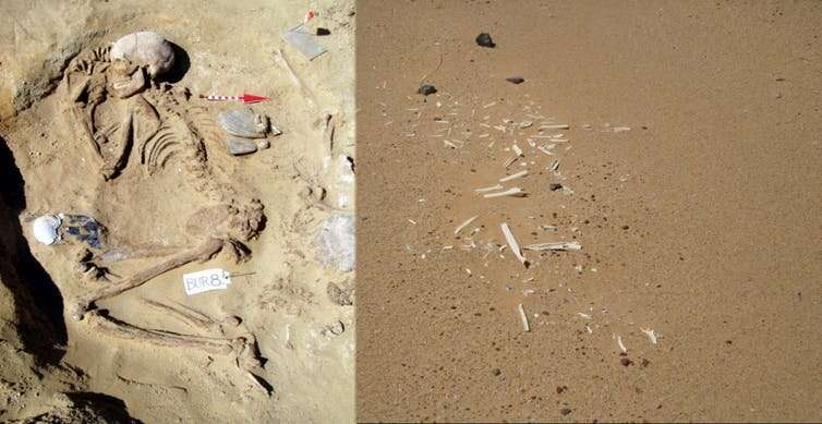 Who were the mysterious Neolithic people that enabled the rise of ancient Egypt? Here's what we've learned on our digs