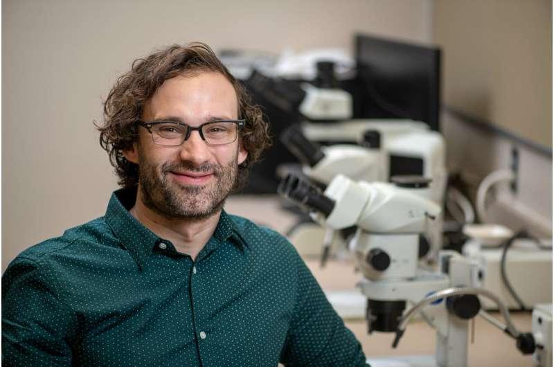 WSU researcher discovers oldest tattoo tool in western North America