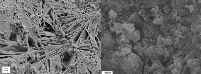 Researchers pave the way to salt-resistant concrete
