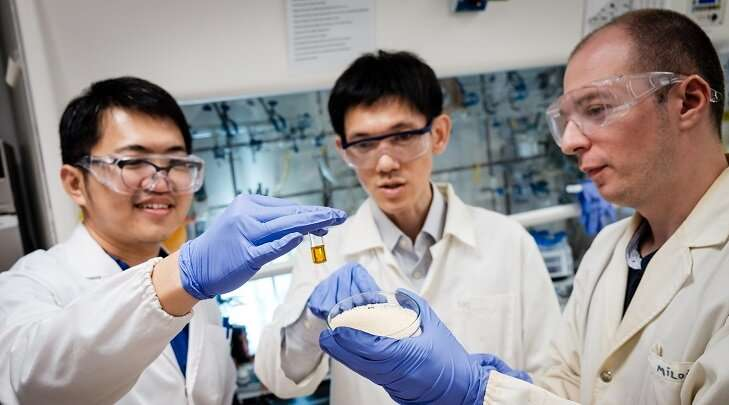 Scientists convert plastics into useful chemicals using sunlight