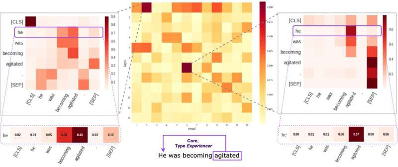 Investigating the self-attention mechanism behind BERT-based architectures