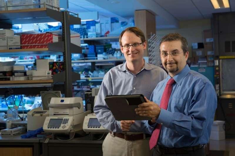 Researchers develop urine test for bladder cancer