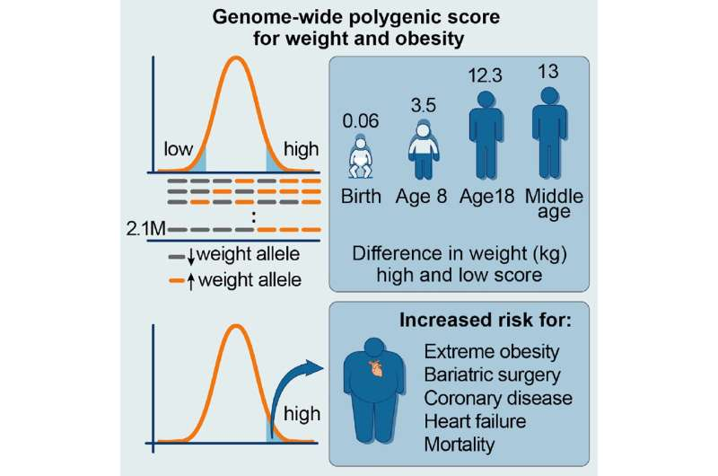 Researchers use genetic profiles to predict obesity risk at birth