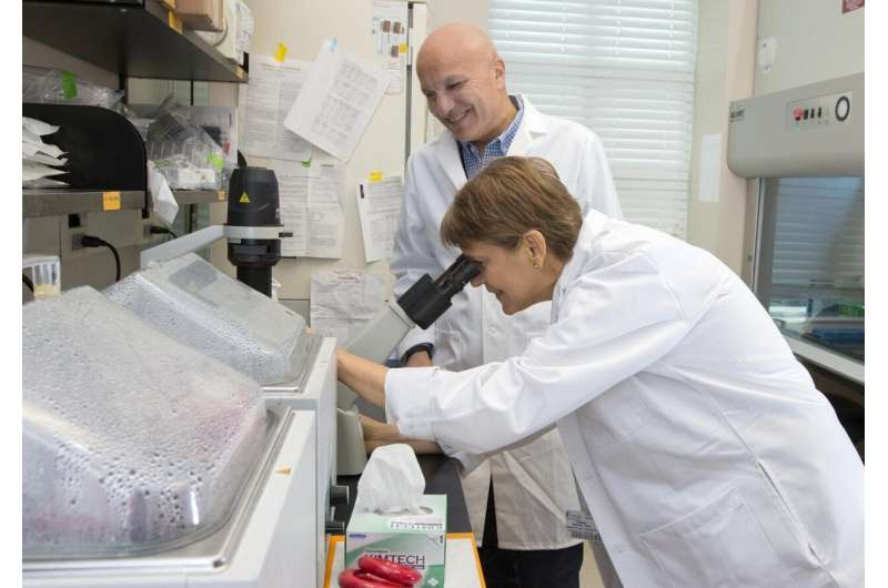Newly discovered protein is the permit to the powerhouse of cells
