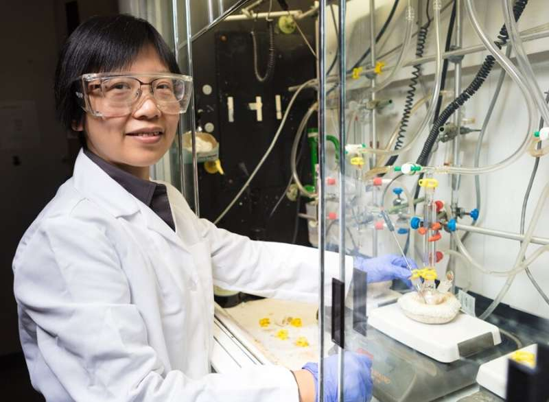 Researchers find cost-effective method for hydrogen fuel production process