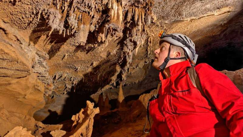 Discovery of an endangered species in a well-known cave raises questions