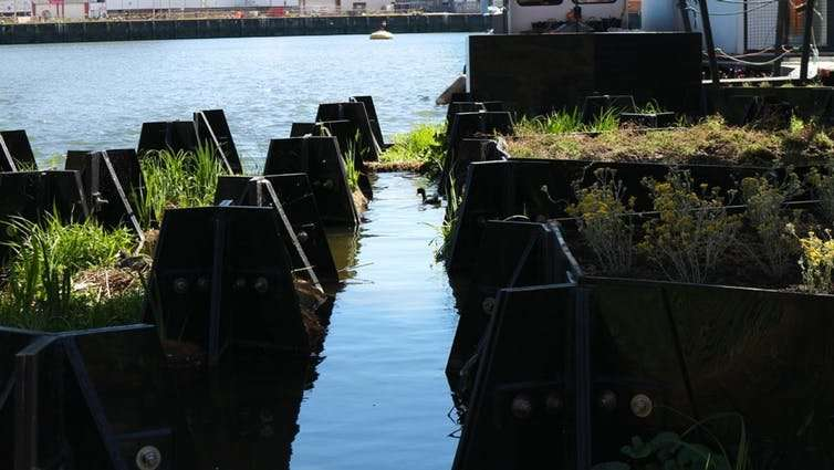 Floating parks made from plastic waste could unite communities to tackle pollution
