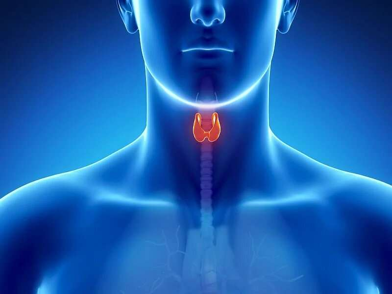 Inflammation linked to thyroid dysfunction in psoriasis patients
