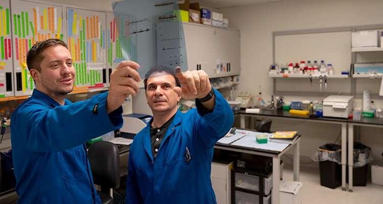 New screening method identifies inhibitors of cancer cell metabolism