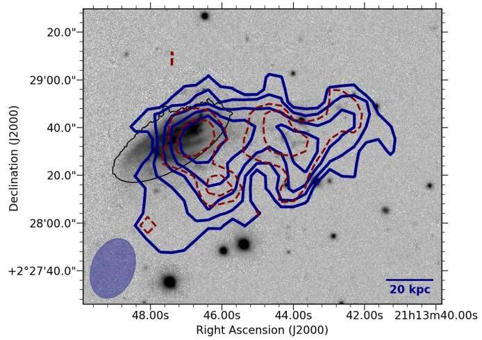 Observations reveal gas stripping and enhanced star formation in the galaxy JO206