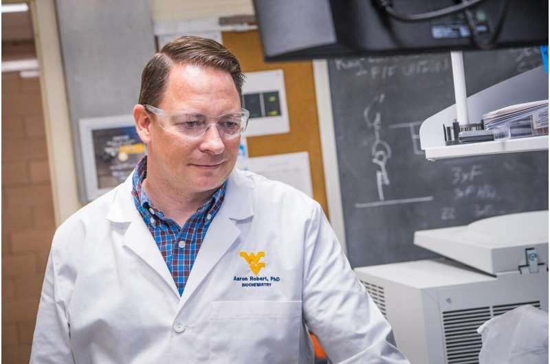 Using bacteria from hot springs, WVU biochemist studies RNA splicing in humans