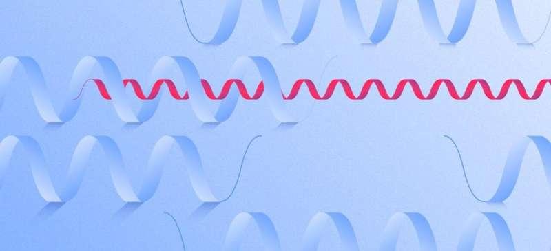 X-ray laser sight reveals drug targets