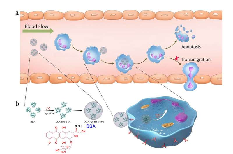 New technology promises improved treatment of inflammatory diseases