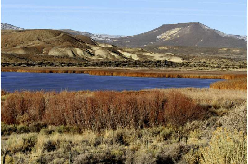 Climate change negatively affects waterbirds in the American West