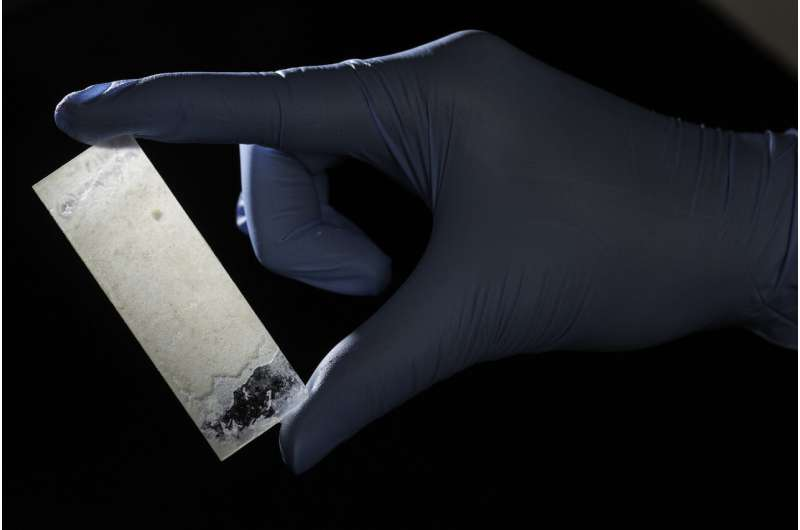 Researchers create artificial mother-of-pearl using bacteria