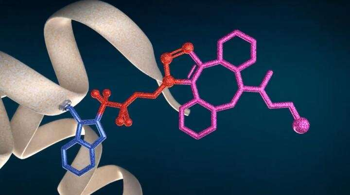 New technology CF LINK for protein bioconjugation and structural proteomics