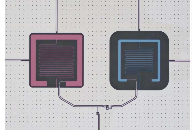 Researchers achieve quantum control of an oscillator using a Josephson circuit