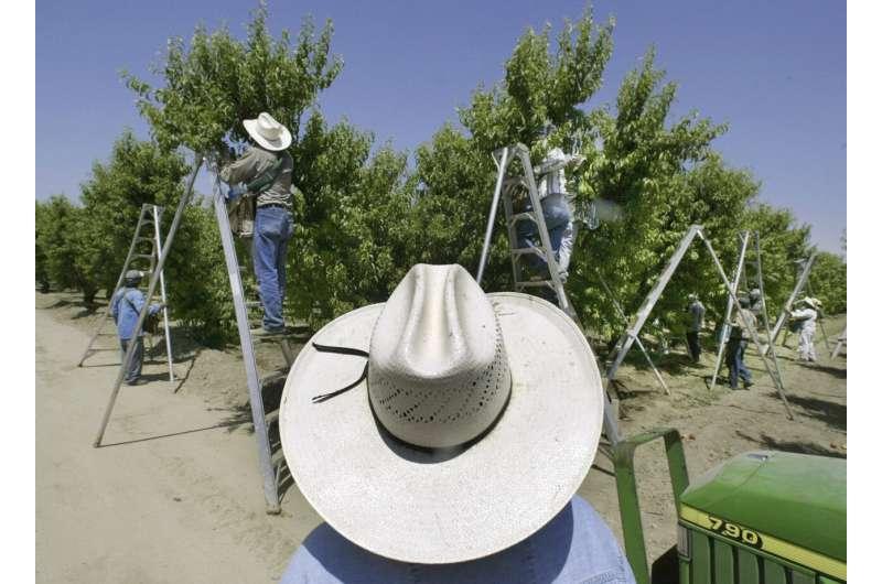 California to ban pesticide said to harm child development
