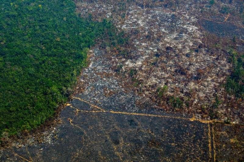 Deforestation in Brazil's Amazon, shown in this photo taken in Para state in August 2019, has risen sharply this year