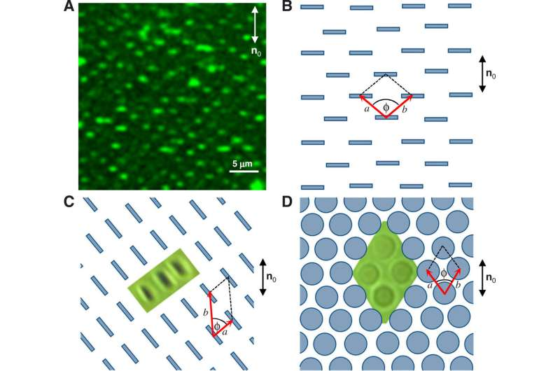 Electrostatically controlled surface boundary conditions in nematic liquid crystals and colloids.
