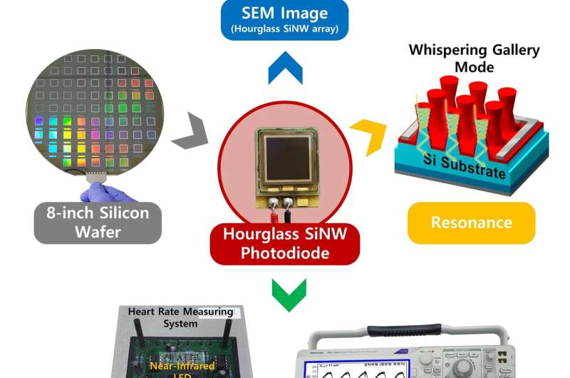 Hourglass-shaped silicon photodiodes with an enhanced near-infrared photoresponse