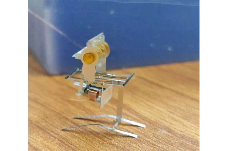New designs for jumping and wing-flapping microrobots