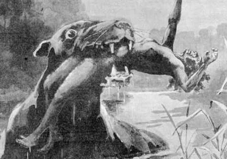 Of bunyips and other beasts: living memories of long-extinct creatures in art and stories