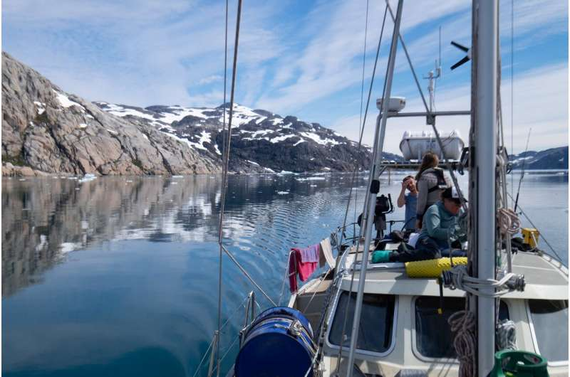 Tracing the journey of microplastics in the Arctic
