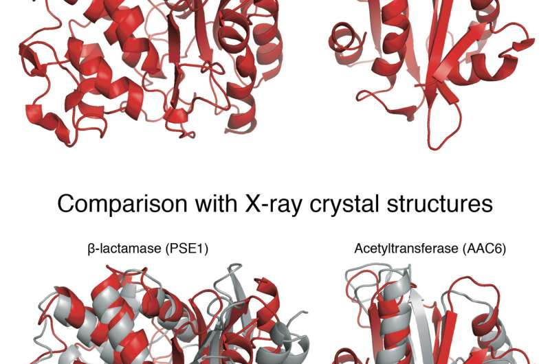 New technique to determine protein structures may solve biomedical puzzles