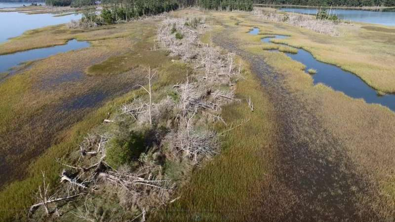 Study highlights vulnerability of rural coast to sea-level rise