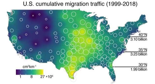 Using artificial intelligence to track birds' dark-of-night migrations