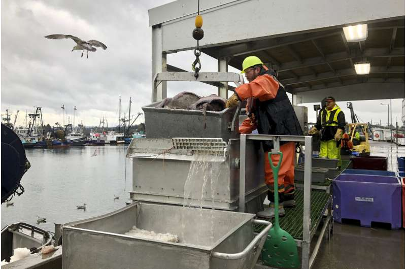 West Coast fishery rebounds in rare conservation 'home run'