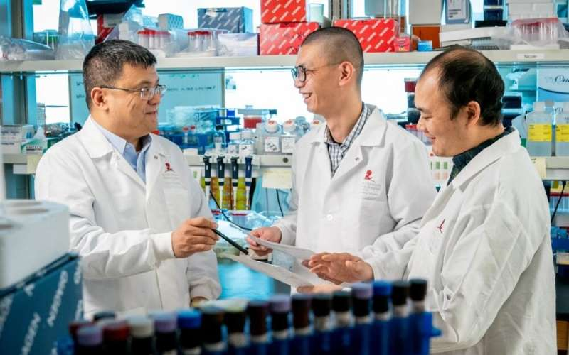 Researchers reprogram T cells to improve cancer immunotherapy