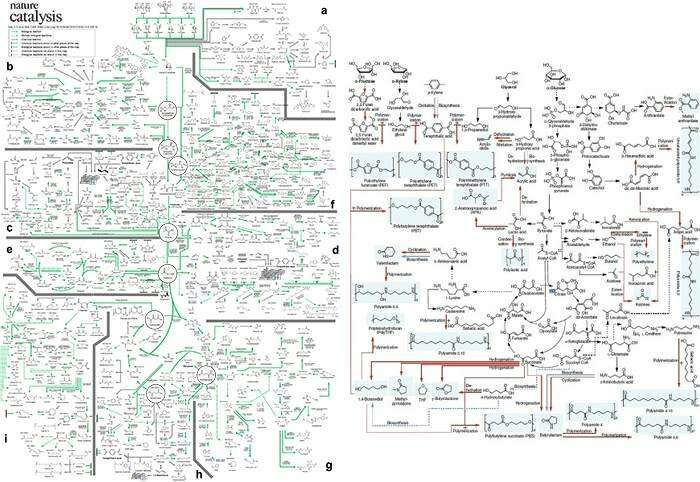 A comprehensive metabolic map for production of bio-based chemicals
