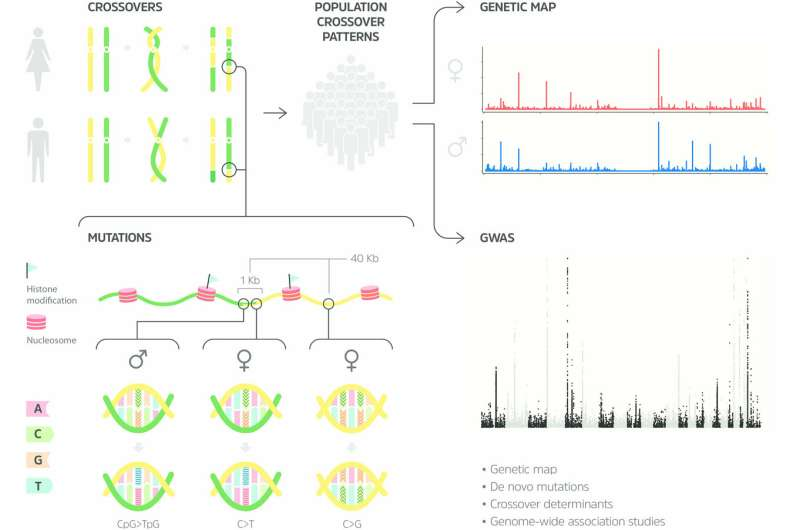**deCODE publishes the first full resolution genetic map of the human genome