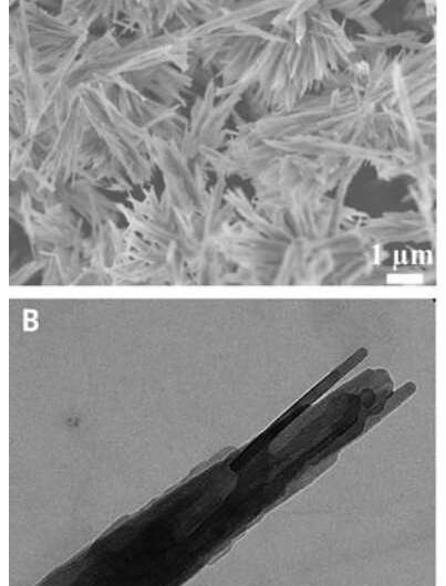 Previously unknown crystalline phase of semi-aqueous calcium carbonate discovered