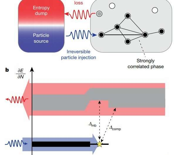 **A circuit platform made of strongly interacting microwave photons