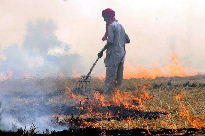 Crop residue burning is a major contributor to air pollution in South Asia