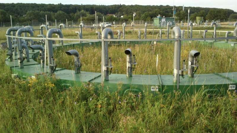 Rain is important for how carbon dioxide affects grasslands