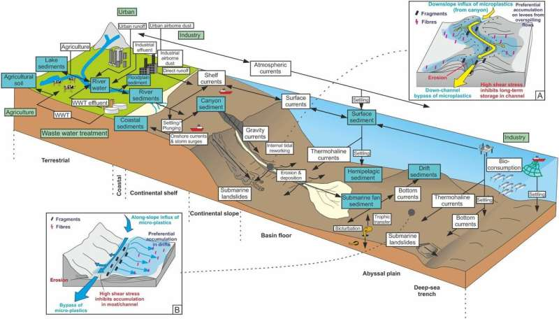 Microplastics accumulate in hotspots for deep-sea life
