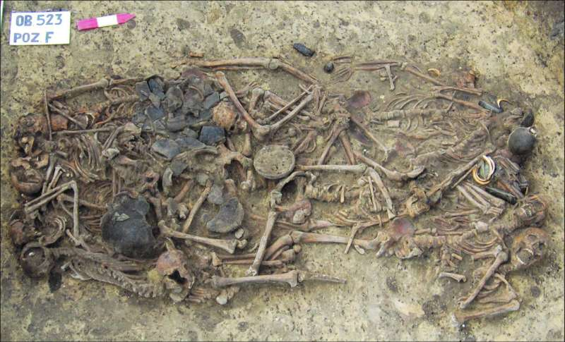 Analysis of remains in ancient gravesite gives insight into Neolithic history in Poland